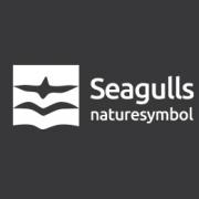 Seagulls-04