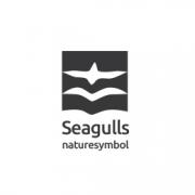 Seagulls-05