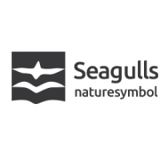 Seagulls-06