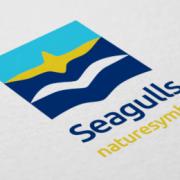 Seagulls-07