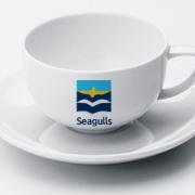 Seagulls-08