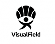 visualfield-5