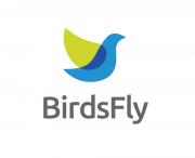Birds-fly1
