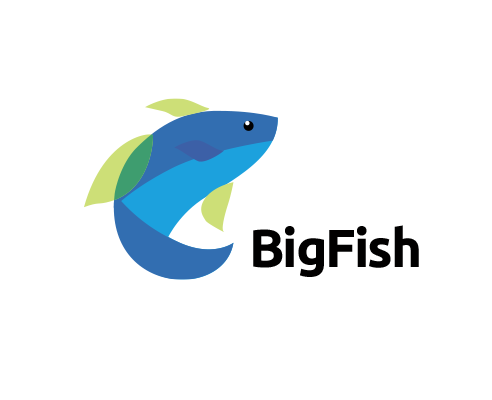 Bigfish3