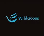 wide-goose2